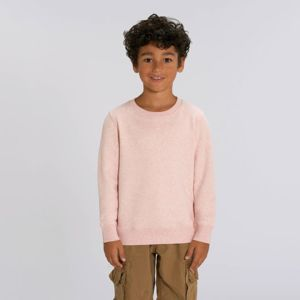 Kids mini Changer iconic crew neck sweatshirt (STSK913) Thumbnail